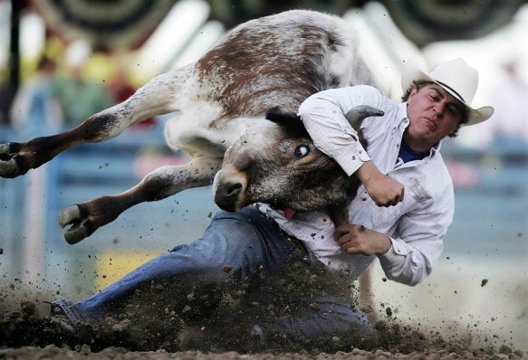 Торговля акциями на фондовых биржах